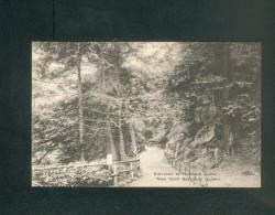 USA - New York Botanical Garden - Bronx Park - Entrance To Hemlock Grove  ( The Alberttype Co) - Bronx