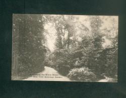 USA - New York Botanical Garden - Bronx Park - Road Along The Bronx River   ( The Alberttype Co) - Bronx