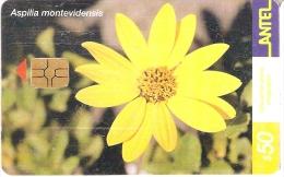 Nº 169 TARJETA DE URUGUAY DE LA FLOR ASPILIA (FLOWER) - Uruguay