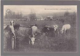 Agriculture - Ed Grand Bazar De Tours - 608 Les Bords Du Cher - Paturage, Vaches - France