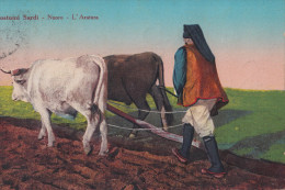 COSTUMI SARDI -NUORO-L'ARATURA -VIAGGIATA 1929 - Costumi