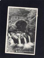 46101     Lussemburgo,    Petite  Suisse  Luxembourgeoise (Mullerthal),  Schiessentumpel,  VG  1950 - Muellerthal