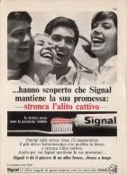 # TOOTHPASTE GIBBS SIGNAL ITALY 1950s Advert Pubblicità Publicitè Reklame Dentifricio Zahnpaste Oral Dental Healthcare - Medical & Dental Equipment