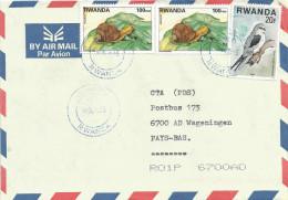 Rwanda 2005 Snail Shell Falcon Bird Of Prey Cover - 1990-99: Afgestempeld
