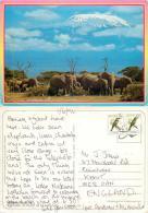 Elephants, Mt Kilimanjaro, Kenya Postcard Posted 1996 Stamp - Kenya