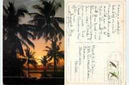 Tropical Dawn, Kenya Postcard Posted 1994 Stamp - Kenya