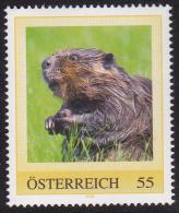 PM   Biber - Private Stamps