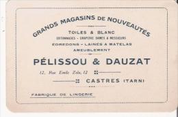 CASTRES (TARN) CARTE DE VISITE ANCIENNE DES ETS PELISSOU ET DAUZAT GRANDS MAGASINS DE NOUVEAUTES 1925 - Visiting Cards