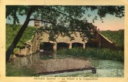 BRIARE  La Trezée à La Cognardiere - Briare