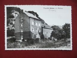 La Maillieue : Propri�t� Delame - REPRO ann�e 70 (L2382)