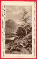 [DC6242] SEE IM GEBIRGE - LAC DANS LES MONTAGNES - Old Postcard - Austria