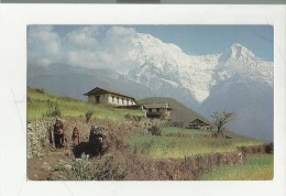 BELLA CARTOLINA CURIO EMPORIUM HOTEL ANNAPURNA  KATHMANDU NEPAL CON FRANCOBOLLO SPEDITA - Nepal