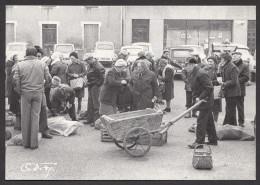 CPM 71 - Saint Bonnet De Joux  - Claude FAGE - Marché, Foire Aux Lapins - 1980 - France