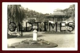 TOMAR - UMA VISTA DO JARDIM PUBLICO - UM CORETO - 1950 REAL PHOTO PC - Santarem