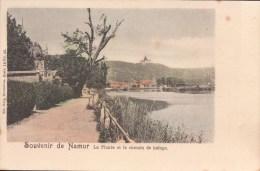 Namur Souvenir De Namur La Plante Et Le Chemin De Halage ( Nels ) - Namur