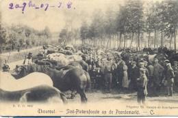 .. THOUROUT. TORHOUT. D.V.D.  8917. Sint-Pietersfeeste Op De Peerdemarkt. Uitg: Samyn De Borchgrave. Postée 1901. - Torhout