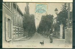 CHATOU - L'Avenue De Brimont  - Gc244 - Chatou