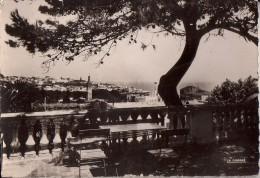 TANGER: Vue De La Terrasse De La Villa De France - Tanger