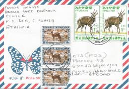 Ethiopia 2004 Awassa A4 Simien Fox Bushbuck Cover - Ethiopië