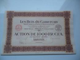 LES BOIS DU CAMEROUN (1000 Francs) DOUALA - Shareholdings