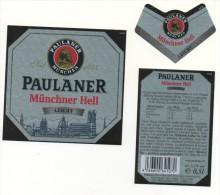 Paulaner - Munchner Hell - Leicht - 0,5l (grise) - Bier