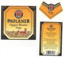 Paulaner - Original Munchner - Urtyp - 0,5l - Bier