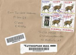 Ethiopia 2013 Wolayta Soddo University Postal Agency Crinum Orchid Flower Bushbuck Barcoded Registered Cover - Ethiopië