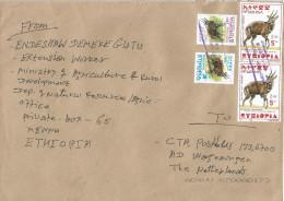 Ethiopia 2013 Meslo Postal Agency Bushbuck Cover - Ethiopië
