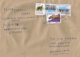 Ethiopia 2013 Hurumu Sub PO Postal Agency Blue Nile Bridge Rhino Bushbuck Cover - Ethiopië