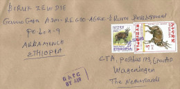 Ethiopia 2013 Shecha Postal Agency Bushbuck Cover - Ethiopië