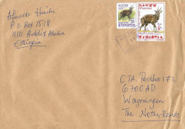 Ethiopia 2013 Arada Postal Agency Bushbuck Cover - Ethiopië