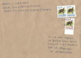 Ethiopia 2013 Soyoma Postal Agency Bushbuck Cover - Ethiopië