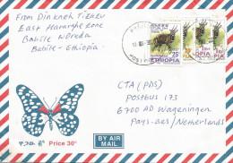 Ethiopia 2008 Babile Postal Agency Bushbuck Cover - Ethiopië