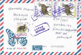 Ethiopia 2008 Durame Postal Agency Bushbuck Express Cover - Ethiopië