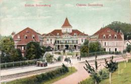 Cpa Chromo 1908, Château De SONNENBERG, Schloss,   (32.35) - Altkirch