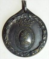 MONZA- CROCE ROSSA DI MONZA 4.10.1917 - Altri