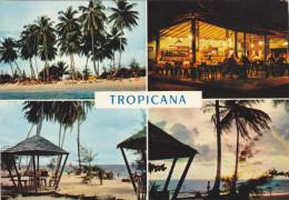 AFRICA,afrique,GABON,LIBREVILLE,HOTEL,TROPICANA,paillotte,restaurant,multivue Ancienne - Gabon