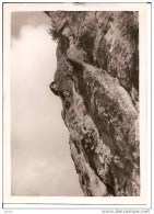 PHOTO ESCALADE PETIT RAPPEL DU RENARD 8 &9 OCTOBRE 1949,JOLI PLAN A VOIR !! REF 2900 - Escalade