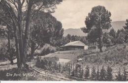 1900 CIRCA - WYNBERG THE PARK - Afrique Du Sud