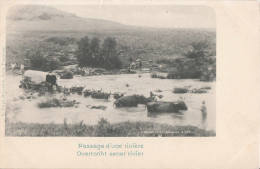 1900 CIRCA - PASSAGE D'UNE RIVIERE - OVERTOCHT EENER RIVIER - Afrique Du Sud