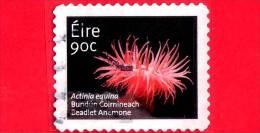 IRLANDA - EIRE - 2013 - Fiori - Fleurs - Flowerrs - Beadlet Anemone (Actinia Equina) - 90 - Usati