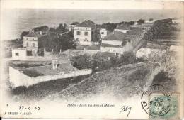DELLYS - Algeria