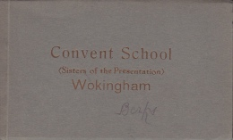 Workingham - Convent School école Religieuse), Carnet De 10 CPA, Ref 1403-094 - Sonstige