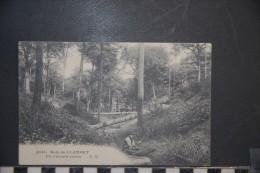 CP, 92, Bois De Clamart Un Chemin Creux N°1841 Edition EM 1913 - Clamart
