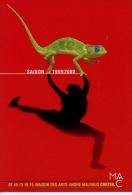 Créteil Maison Arts Malraux : Saison 1999/2000 (caméléon) - Creteil