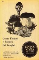 # CREMA NIVEA 1950s Advert Pubblicità Publicitè Reklame Moisturizing Cream Creme Hydratante Protector Funghi Mushrooms - Non Classificati