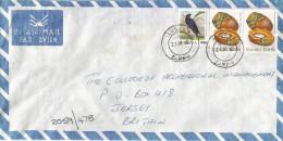 Zambia 1990 Lusaka 35n Overprinted 70n Swallow Borassus Bottle Palm K10 Cover - Zambia (1965-...)