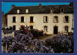 29 ILE DE SEIN Jardin Fleuri Sur L'Ile ; Agapanthe Bleue, Rosiers - Ile De Sein