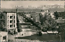 MAROC  MARRAKECH / Avenue Mangin / CARTE GLACEE - Marrakech