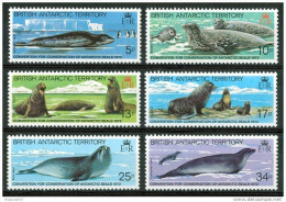 1983 British Territorio Antartico Foche Seals Scellès Set MNH** B67 - Nuovi